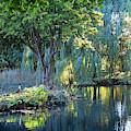 Peaceful Oasis - Japanese Garden Lake by Gill Billington