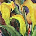 Peeking Lily by Lynne Bolwell