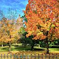 Peeking Through Fall At The Texas State Capital by Lynn Bauer