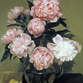 Peonies Front And Center by Robert Holden