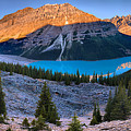 Peyto Lake Giant Sunrise Panorama by Adam Jewell