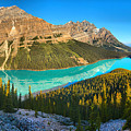 Peyto Lake Mid Morning Reflection Panorama by Adam Jewell