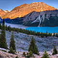 Peyto Lake Morning Sunrise Panorama by Adam Jewell