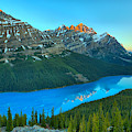 Peyto Lake Red Tip Reflections by Adam Jewell
