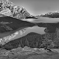 Peyto Lake Spring Morning Reflections Black And White by Adam Jewell
