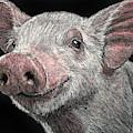Piglet by William Underwood