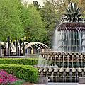 Pineapple Fountain At Sunset by Adam Jones