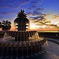 Pineapple Fountain In Charleston by Sam Antonio Photography