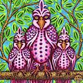 Pink Bird Trio by Amy E Fraser