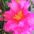 Pink Camellia Abstract by Alice Gipson