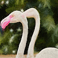 Pink Flamingo Pair by Andrea Anderegg