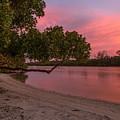 Pinkish Morning by Karin Pinkham