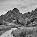 Pinnacles Np IIi Bw by David Gordon