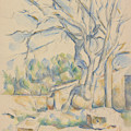 Pistachio Tree At Chateau Noir by Paul Cezanne