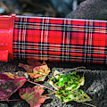 Plaid Thermos - Aladdins Heritage by Dale Powell
