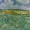 Plain Near Auvers By Vincent Van Gogh by Superstock