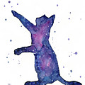 Playful Galactic Cat by Olga Shvartsur