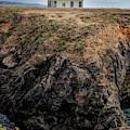 Point Cabrillo Lighthouse California by Joan Carroll