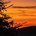 Pointing To Dawn by Matt Swinden