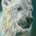 Polar Bear Portrait by MM Anderson