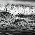 Polychrome Mountain, Denali National Park, Alaska, Bw by Lyl Dil Creations