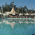 Poolside Reflections by Slim Aarons
