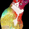Pop Cat Kitten Kitty Feline Cat Mom Pets Gift Funny Rainbow by Tony Rubino