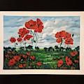 Poppies        41 19 by Cheryl Nancy Ann Gordon