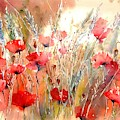 Poppy Fields Forever by Suzann Sines