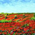 Poppy Meadow by Asha Sudhaker Shenoy
