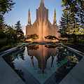 Portland Temple Night by Dustin LeFevre