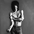 Portrait Of Iggy Pop by Jack Robinson