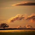 Prairie Light by Jeff Phillippi
