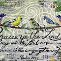 Praise Birds by Janis Lee Colon