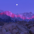 Predawn Alpenglow On The Sierras From The Alabama Hills California by Dave Welling