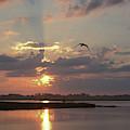 Prime Hook Sunrise 1 by Buddy Scott