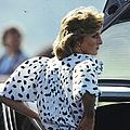 Princess Diana Retrospective by Anwar Hussein