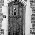 Princeton University Wright Hall Bw by Susan Candelario