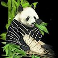 Protect The Panda by Carol Cavalaris