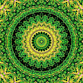 Psychedelic Kaleidoscope Abstract Pattern 11 by Artist Dot