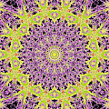 Psychedelic Kaleidoscope Abstract Pattern 9 by Artist Dot