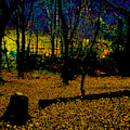 Psychedelic Night Forest Trees In Highgate Woods 632 by Artist Dot
