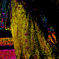 Psychedelic Night Forest Trees In Highgate Woods 652 by Artist Dot