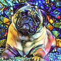 Psychedelic Pug Dog Art by Peggy Collins