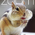 Published In Zoom Magazine - Summer 2019 Edition Front Cover by Peggy Collins
