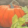 Pumpkin In Patch by Marcella Chapman
