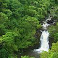 Puohokamoa Falls by Marie Leslie