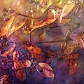 Purple Light 6049 Idp_pl_2 by Steven Ward