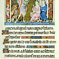 Queen Marys Psalter John The Baptist by Anonymous