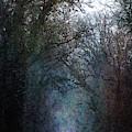 Quiet 7862 Idp_2 by Steven Ward